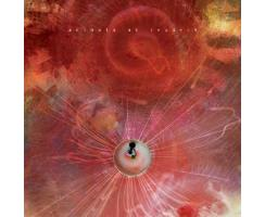 Animals As Leaders - Another Year Playalong