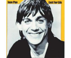 Iggy Pop - Lust For Life Playalong