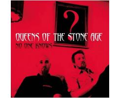 Queens Of The Stoneage - No One Knows Playalong