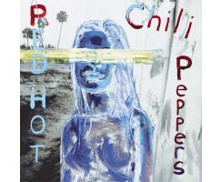Red Hot Chili Peppers - Can`t Stop Playalong