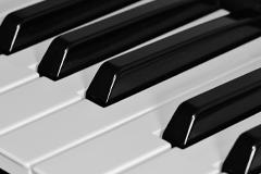 Piano-Plug-ins auf der Buehne Vorschau